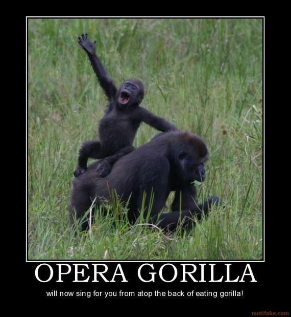 Epic Gorilla Fight - Page 2 of 2 - Barnorama