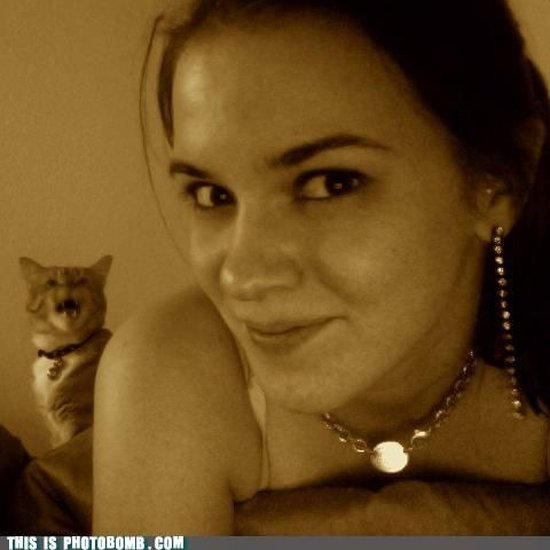 photobombs