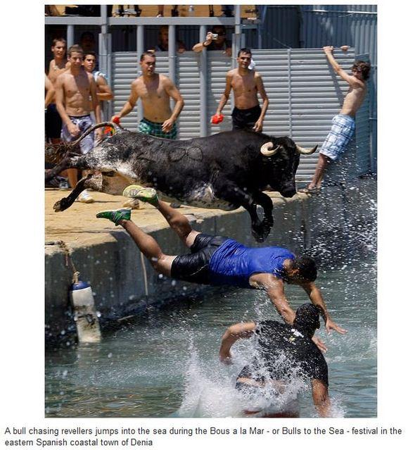 stunts2010