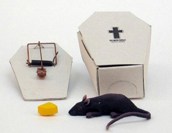 clever mouse trap funny - photo #6