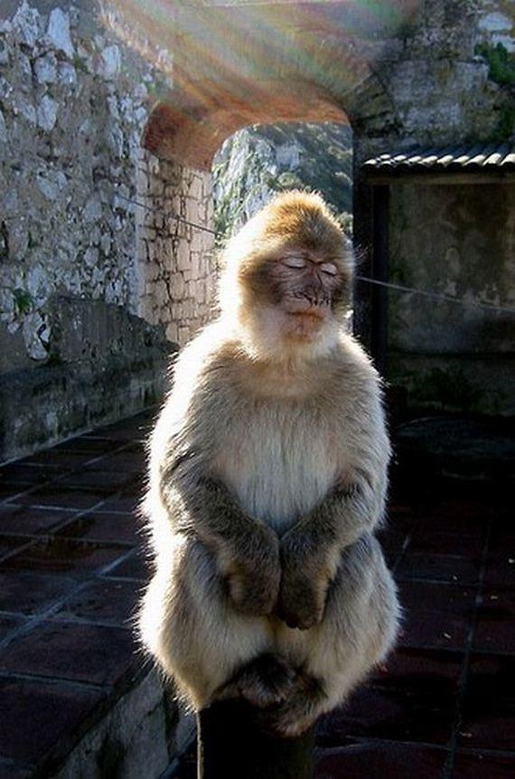 05 - The Power of Meditation - Tira-Pasagad | Saksak-Sinagol