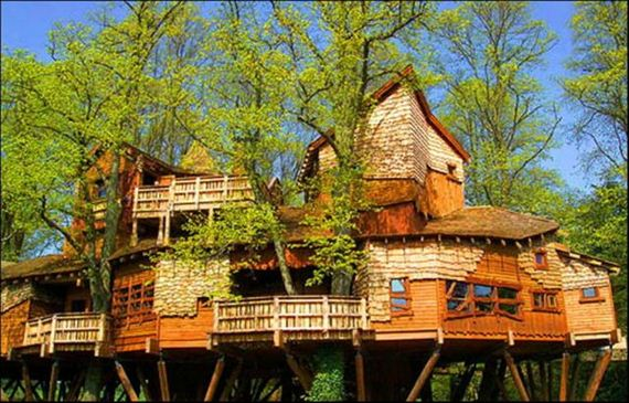 29 - Do you want to live in a tree house? - Photos Unlimited