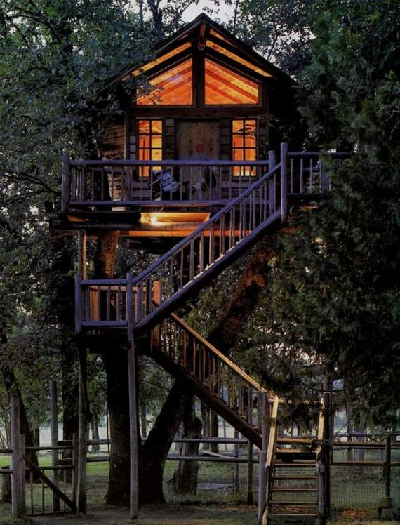 38 - Do you want to live in a tree house? - Photos Unlimited