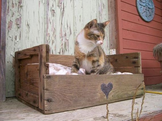 making things from pallets