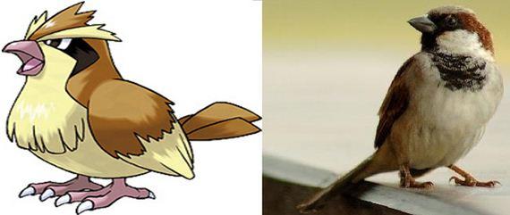 Ζώα-Σίγουρα-Pokemon