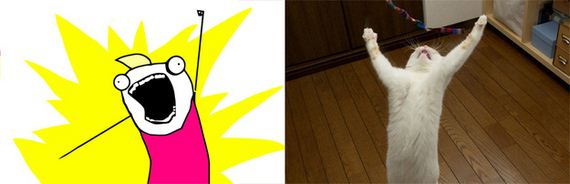 Cats-As-Rage-Faces