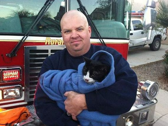 Rescuing a Cat