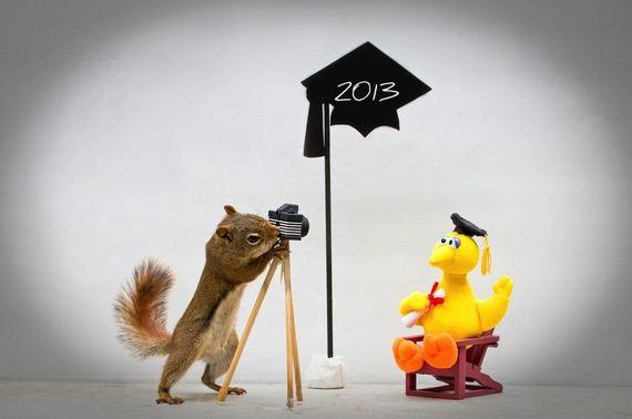 Things-Squirrels