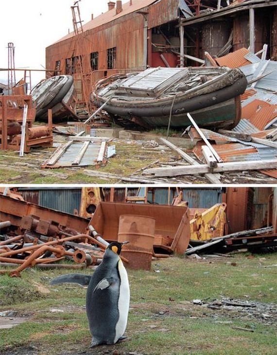 abandoned_wonders_of_antarctica