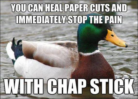 actual-advice-mallard