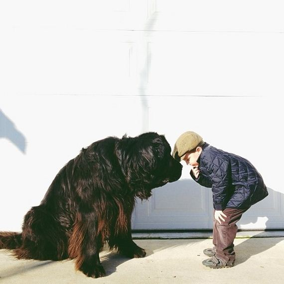 adorable-pictures-between-boy-and his-dog