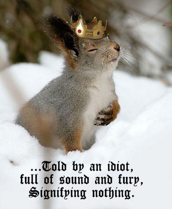 animals-auditioning-shakespeare