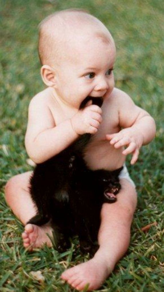 babies-sick-being-upstaged-their-pets