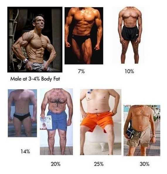 body-fat-percentage-explained-