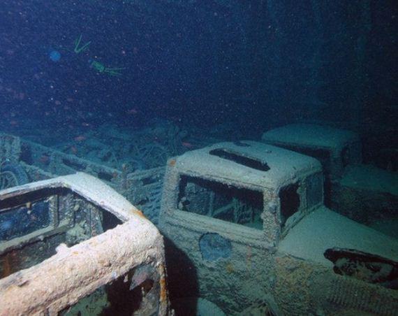 cars-reef