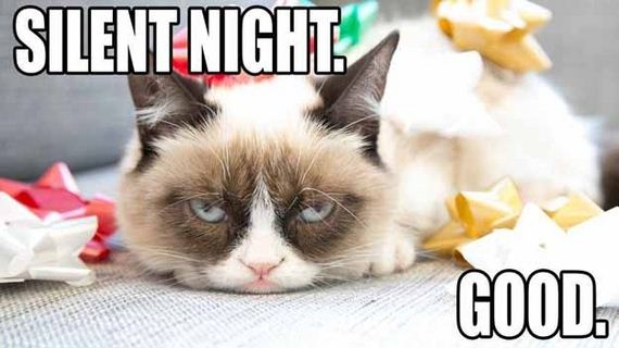 days-of-grumpy-cat-