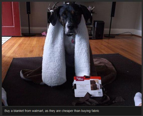 diy-dog-backpack
