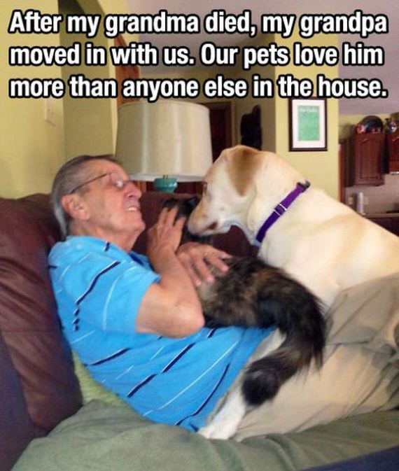 dogs_are_a_great_source_of_unconditional_love
