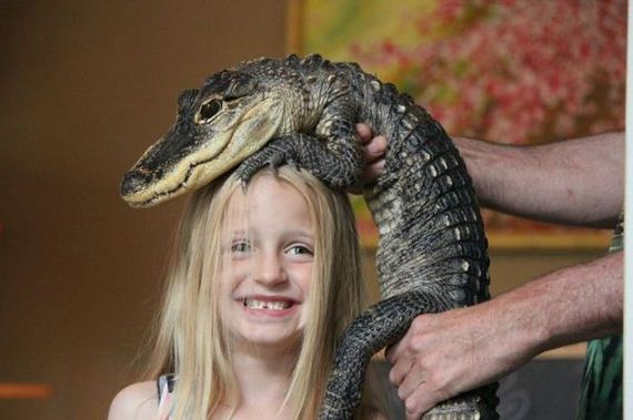educational_fun_with_reptiles_at_childrens_parties