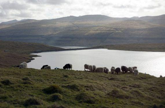 Faroe Islands Barnorama