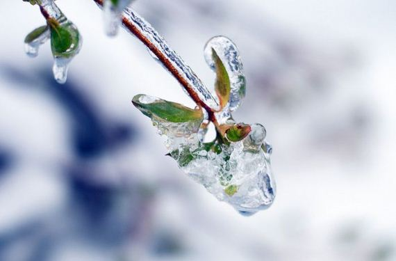 freezing_rain