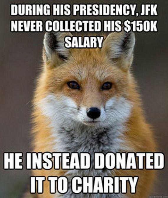 fun_fact_fox