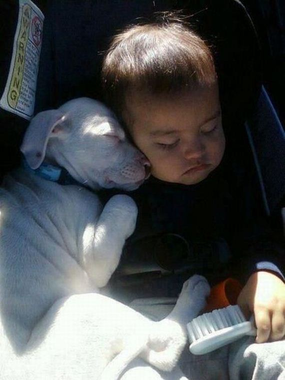 41-funny-pictures-300 - Lasting friendships start early - Inspiration & Hope