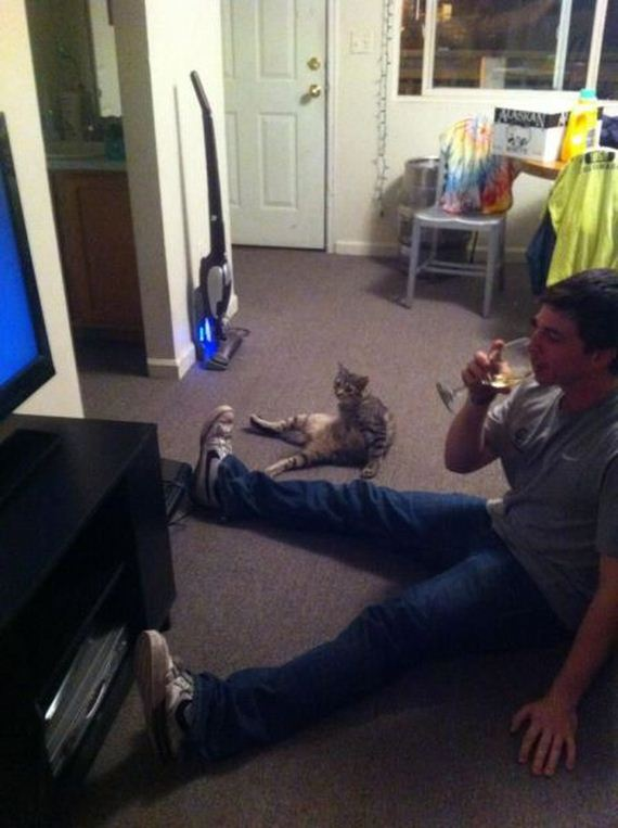 funny-pictures-341