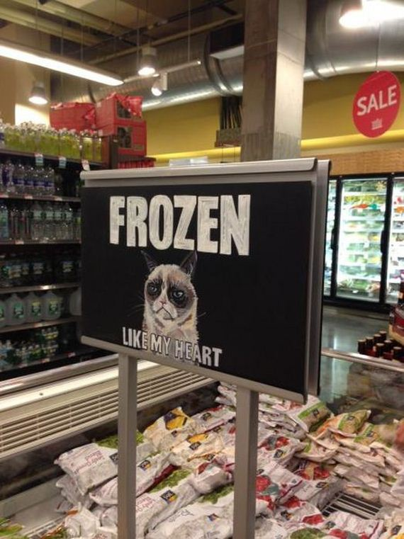 funny-pictures-408
