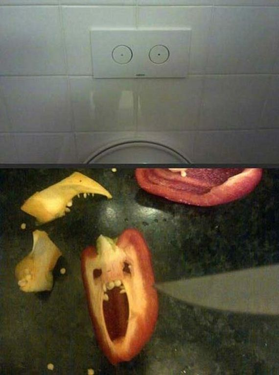 funny-pictures-433