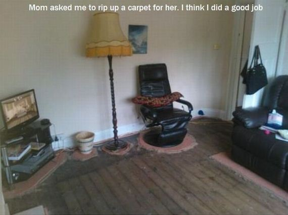 funny-pictures-460