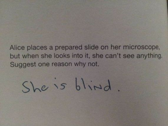 funny-pictures-486