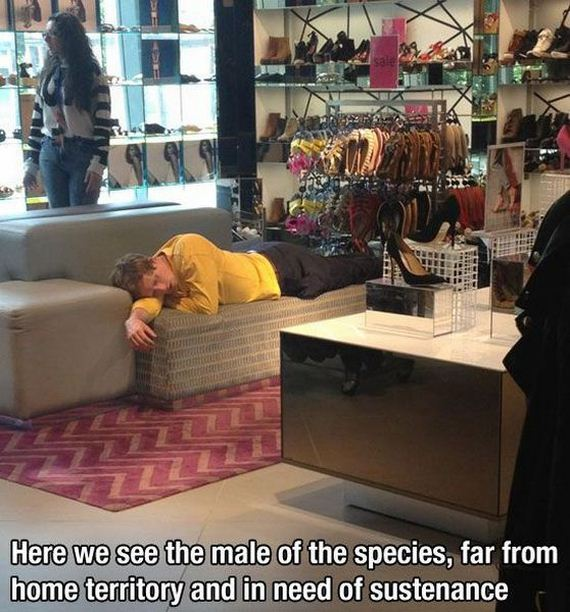 funny-pictures-489