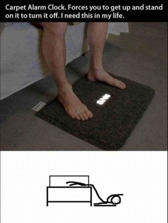 funny-pictures-491