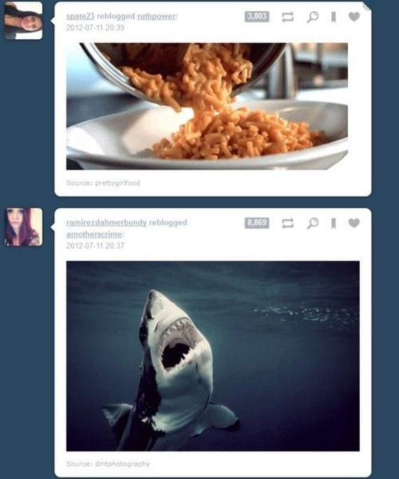 funny-tumblr-coincidences