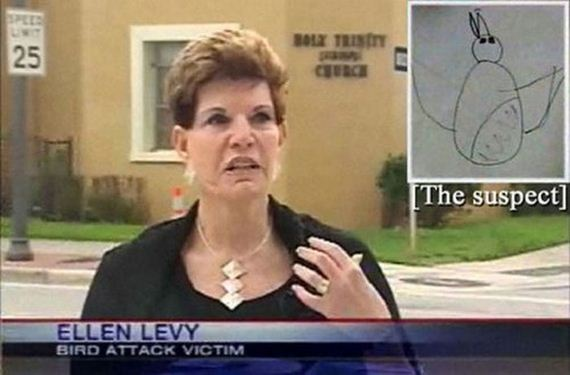 funny-tv-news-moments