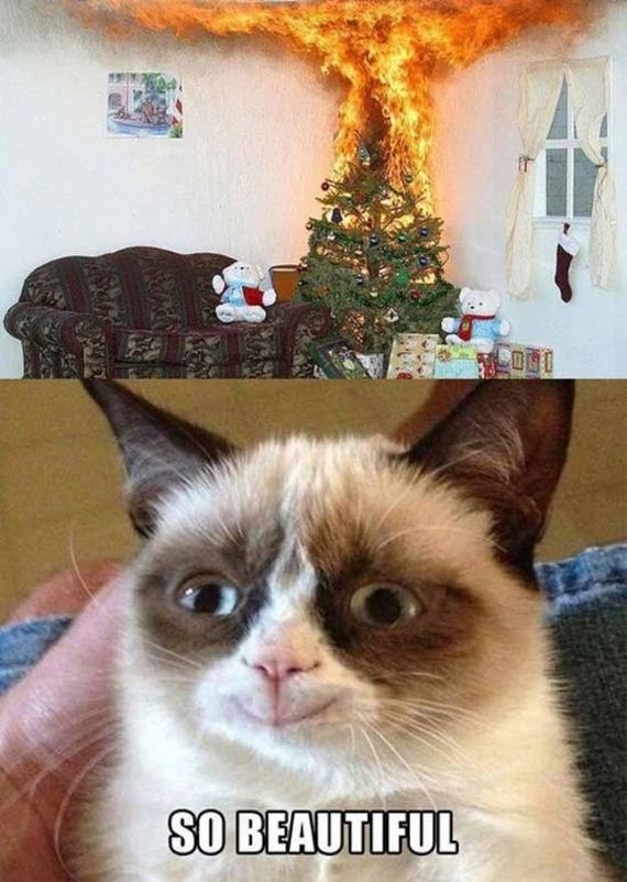 grumpy-cat-christmas