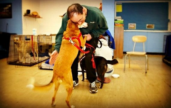 heartwarming-photos-of-the-pet-rescue