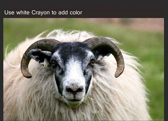 how_to_draw_a_sheep