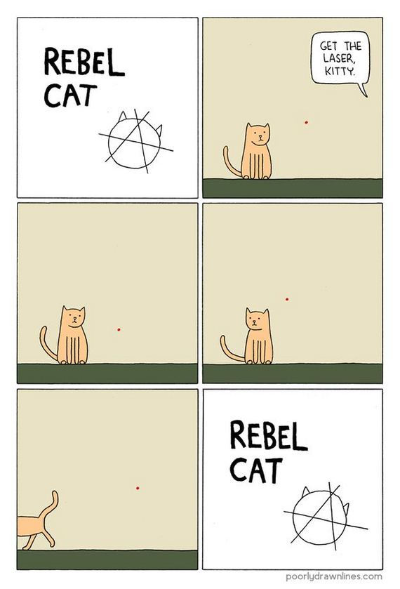 illustrated_truths_about_cats