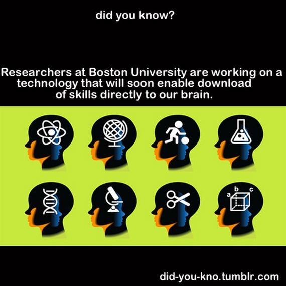interesting-random-facts