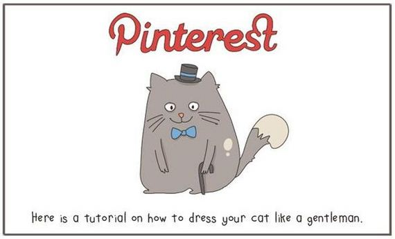 internet_explained_with_cats