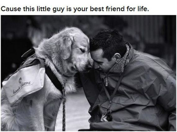 man's-best-friend