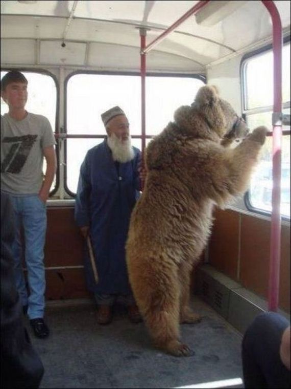 meanwhile_in_russia-2