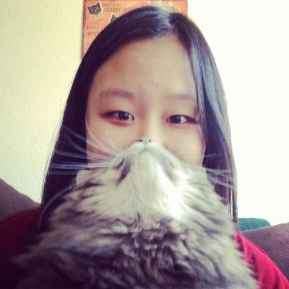 most_epic_cat_beards_of_all_time