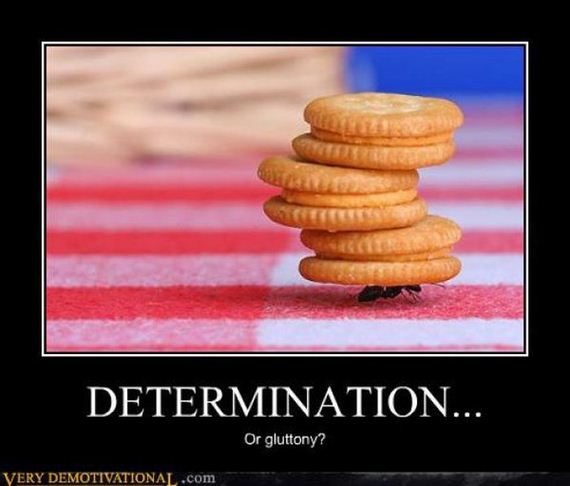 motivational-146