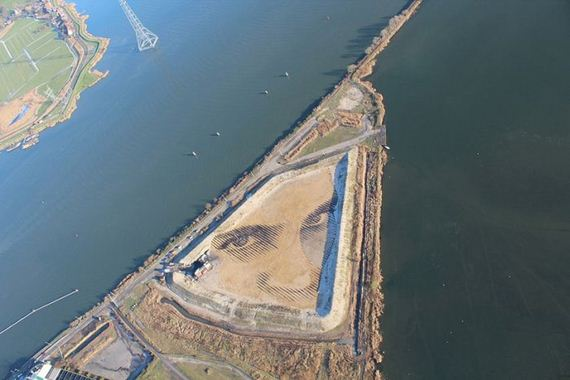one-of-the-world-s-largest-portraits