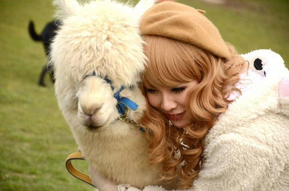 photos-lolita-girls-alpaca-farm