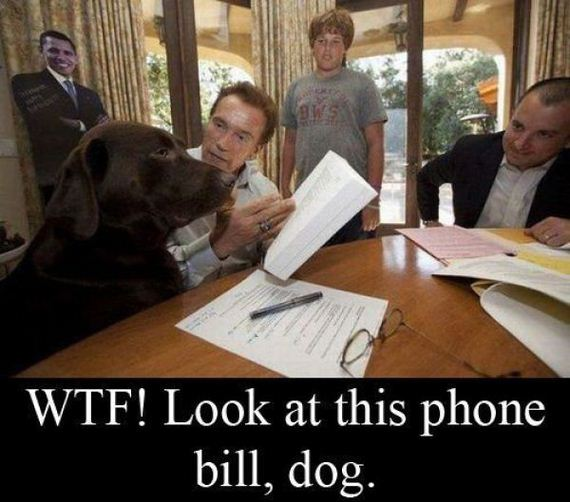 photos-with-funny-caption