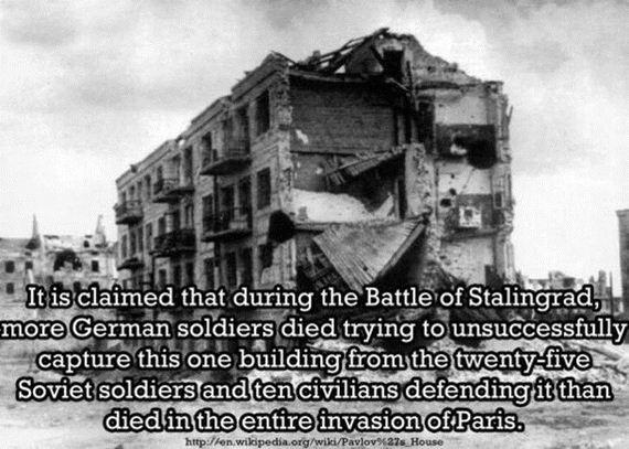 shocking_facts